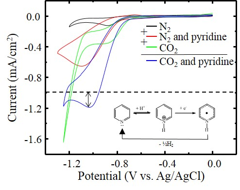 Reduction Current Enhancement of Pyridinium in Carbon Dioxide