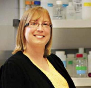 Dr. Shelly Minteer Ph.D.
