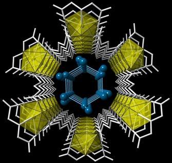 Uranium metal-organic nanotube contains confined water molecules in a hexagonal array. (Unruh et. al.)