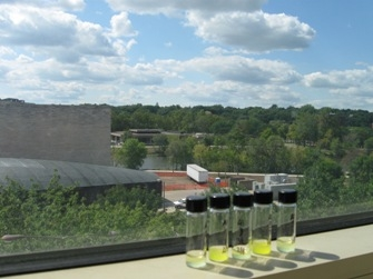 The view of the Iowa River from the lab.
