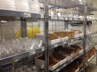 Beakers and other glass times carried in the Stock Room