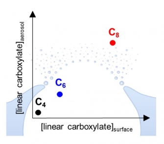 Defining chemical properties by which chemical species are transferred from the ocean surface to sea spray aerosol (SSA).