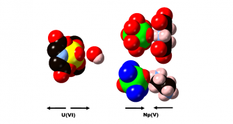 Interactions between H-donors and U(VI) and Np(V) oxo groups impact the thermal expansion properties. (Payne et al. 2018)