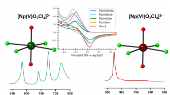 Crystallization of  Np(V) tetrachlorides over Np (VI) species occurs with charge assisted hydrogen bonding (Pyrch et al., 2020)