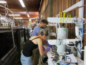 Olga Laskin and Jon Trueblood at Summer 2014 CAICE - IMPACTS Experiment
