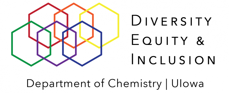 DEI Banner Logo