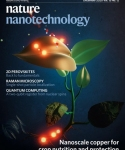Mason Group Nature Nano Nanotechnology